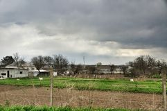 жизнь сельская стоковое изображение