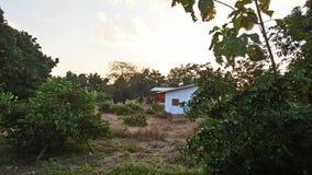 Жизнь сельской местности Стоковые Изображения