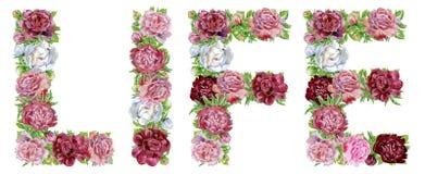 ЖИЗНЬ слова цветков акварели бесплатная иллюстрация