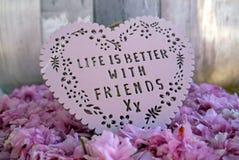 Жизнь лучшая с друзьями Стоковая Фотография RF