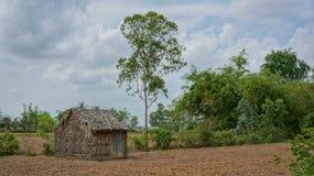 Жизнь фермы в Вьетнаме - простом сарае Стоковые Фотографии RF
