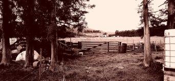 Жизнь фермы Стоковые Фотографии RF
