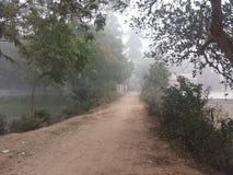 Жизнь любит туманная дорога Стоковое фото RF