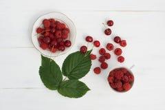 жизнь ягоды все еще Стоковое фото RF