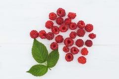жизнь ягоды все еще Стоковые Фотографии RF