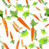 Жизнь eco картины картины моркови счастливая Иллюстрация вектора