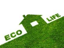 жизнь eco Стоковое Изображение