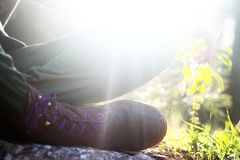 Жизнь Hippie дикая стоковое изображение rf