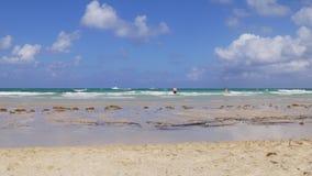 Жизнь 4k Флорида США берега океана пляжа suouth miami летнего дня видеоматериал