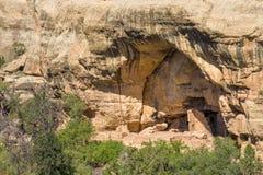 Жилища скалы на доме дуба, национальном парке мезы Verde Стоковое Изображение RF
