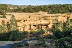 Жилища скалы на елевом доме на дереве на мезе Verde Стоковое Фото