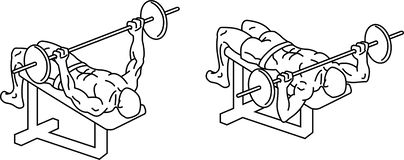 Жим лежа Тренировки и тренировка с весами бесплатная иллюстрация
