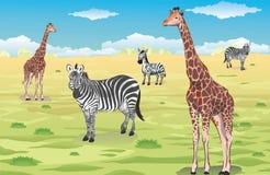 Жирафы и зебры иллюстрация штока