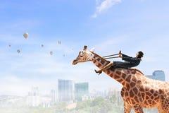 Жираф езды женщины Мультимедиа Стоковые Изображения RF