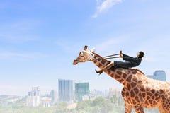 Жираф езды женщины Стоковые Изображения RF