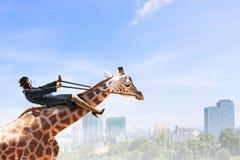 Жираф езды коммерсантки Мультимедиа Стоковая Фотография RF