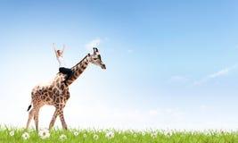 Жираф женщины седлая Стоковые Изображения