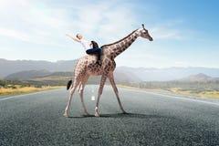 Жираф седловины девушки Мультимедиа Стоковое Фото