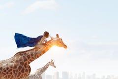 Жираф седловины девушки Мультимедиа Стоковое фото RF