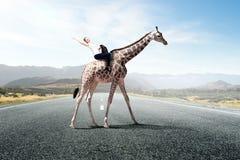 Жираф седловины девушки Стоковое фото RF