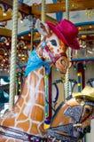 Жираф с красным цветом имел и голубой bandana Стоковая Фотография RF