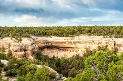 Жилища скалы в национальных парках мезы Verde, CO, США Стоковые Изображения RF