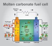 Жидкие отсеки топливного бака карбоната иллюстрация вектора