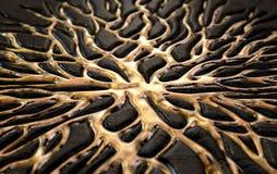 Жидкое золото просачиваясь из утеса Стоковое Изображение RF