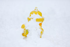 Жидкостный огнетушитель в снеге стоковое фото