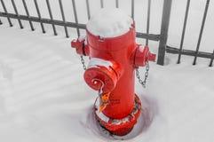 Жидкостный огнетушитель в снежке Стоковые Изображения