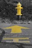 Жидкостный огнетушитель желтого крома Стоковое Изображение RF