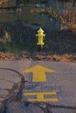 Жидкостный огнетушитель желтого крома Стоковые Изображения RF