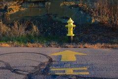 Жидкостный огнетушитель желтого крома Стоковая Фотография RF