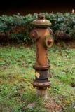 жидкостный огнетушитель ржавый Стоковые Фото