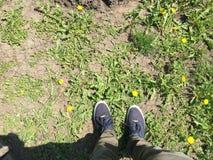 Жидкость весны Стоковые Фотографии RF