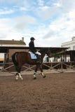 жокей лошади Стоковое Изображение RF