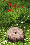 жорнов сада исторический Стоковое Изображение RF