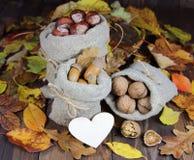Жолуди, каштаны и грецкий орех в сумках листьев осени с сердцем Стоковое фото RF