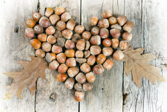 Жолуди формируя сердце на деревянной предпосылке Стоковое Изображение RF