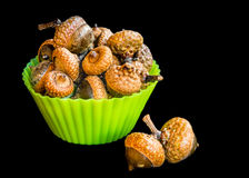 Жолудь в зеленой форме булочек Стоковая Фотография RF