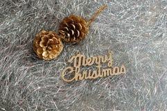 2 жолудя с с Рождеством Христовым Стоковое Фото