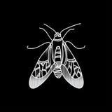 Жук вектора Красиво ornated насекомое Стоковое Изображение