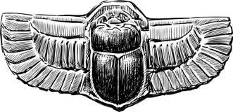 Жук скарабея Стоковые Изображения