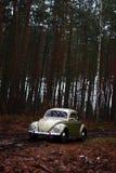 Жук 1957 Vw Стоковое Фото