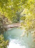 Журнал дерева через реку стоковые изображения