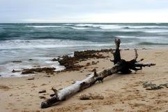 журнал пляжа Стоковое Изображение RF