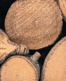 Журнал конца древесины вверх Стоковая Фотография