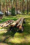 Журналы дерева Стоковое Изображение RF