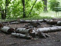 Журналы окружая огонь лагеря Стоковые Изображения RF