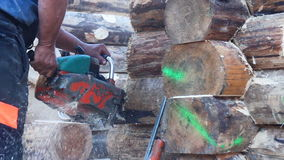 Журналы древесины вырезывания цепной пилы видеоматериал